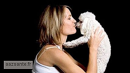 Conviviality with dogs can improve the quality of life of pregnant