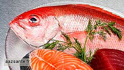 Fish consumption helps fight asthma in children