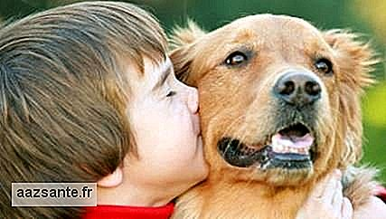 Having a dog in childhood reduces asthma risk by 15%, study finds