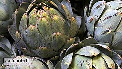 Artichoke helps in weight loss and is rich in nutrients
