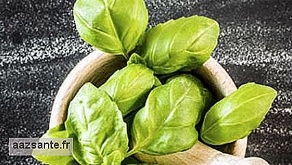 Basil relieves bowel problems and has anti-inflammatory action
