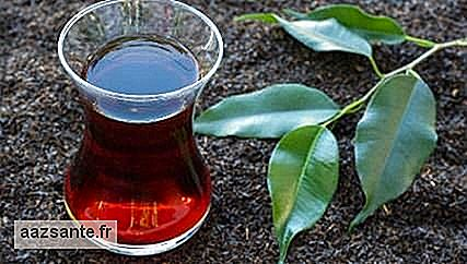 Blackberry tea: health benefits, recipes and nutrients