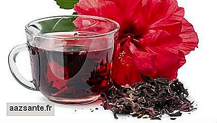 Hibiscus tea: how to prepare and consume to lose weight