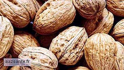 Nuts help prevent some cancers