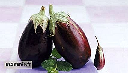 The nutritional properties of eggplant