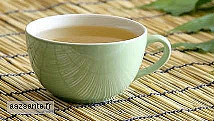 White tea is powerful antioxidant and improves mood