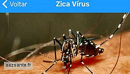 Population d'application Zika alerte virus, mais élimine la rumeur
