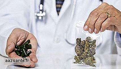 For the first time, Anvisa registers marijuana medicine