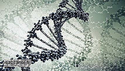 Study finds genetic risks common to psychiatric disorders