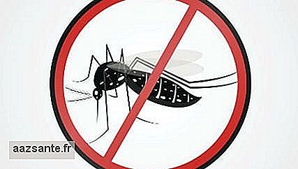 WHO states that Brazil is prepared to face Zika virus