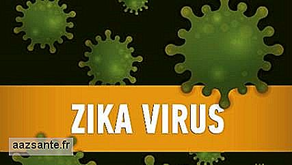 WHO internationalen Notfall Zika Virus aussetzt