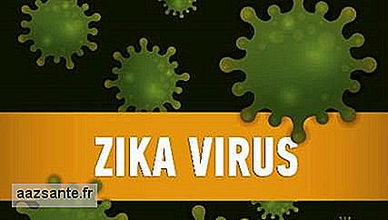 Zika virus can survive up to eight hours out of the body